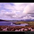 Ireland #02