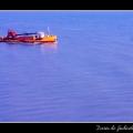 Boat #16