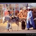 Cart & donkey