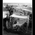 Beach #01