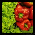 Peppers #01