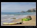 Surf #01