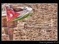 Jordan Flag #01