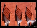 Roofs #01