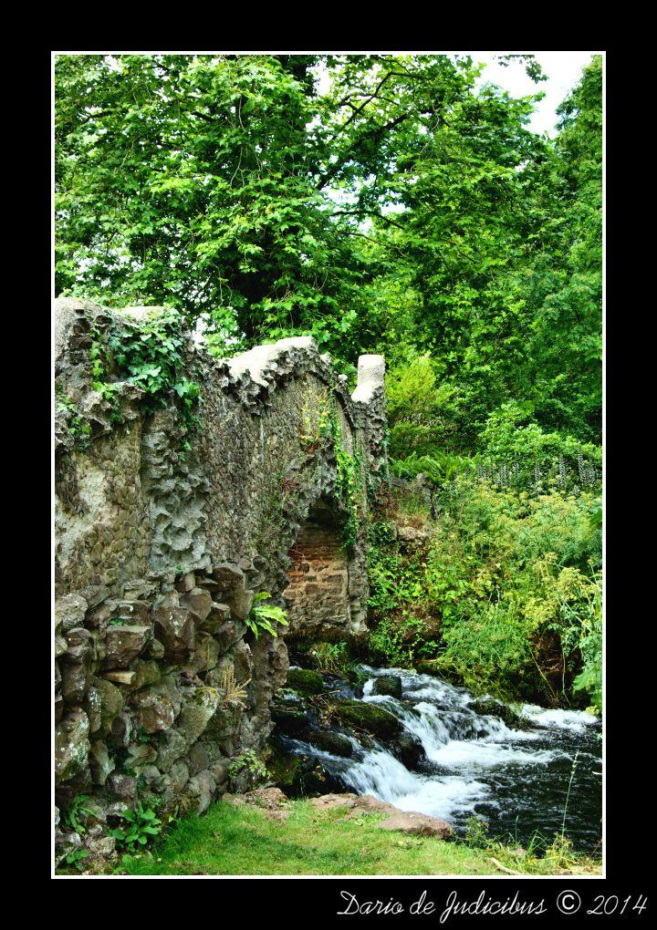 Garden #09