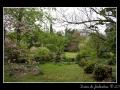 Garden #12