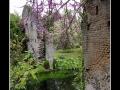 Garden #15