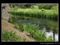 Creek #07