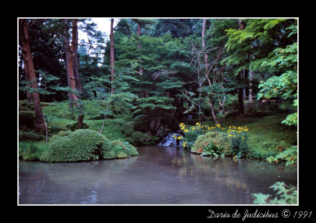 Garden #06