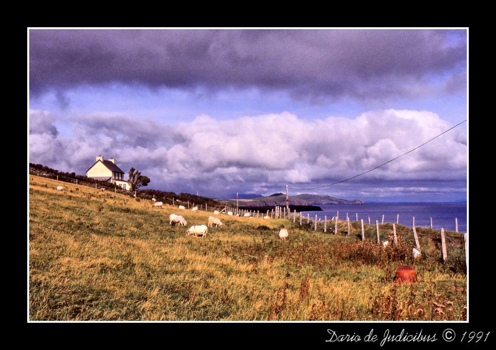 Ireland #08
