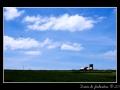 Countryside #08