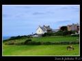 Countryside #09