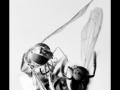 Wasp #02