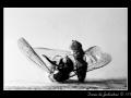 Wasp #04