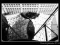 Geometries #01