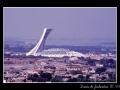 Stadium #01