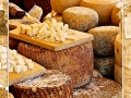 Cheese #01