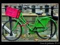 Bike #02