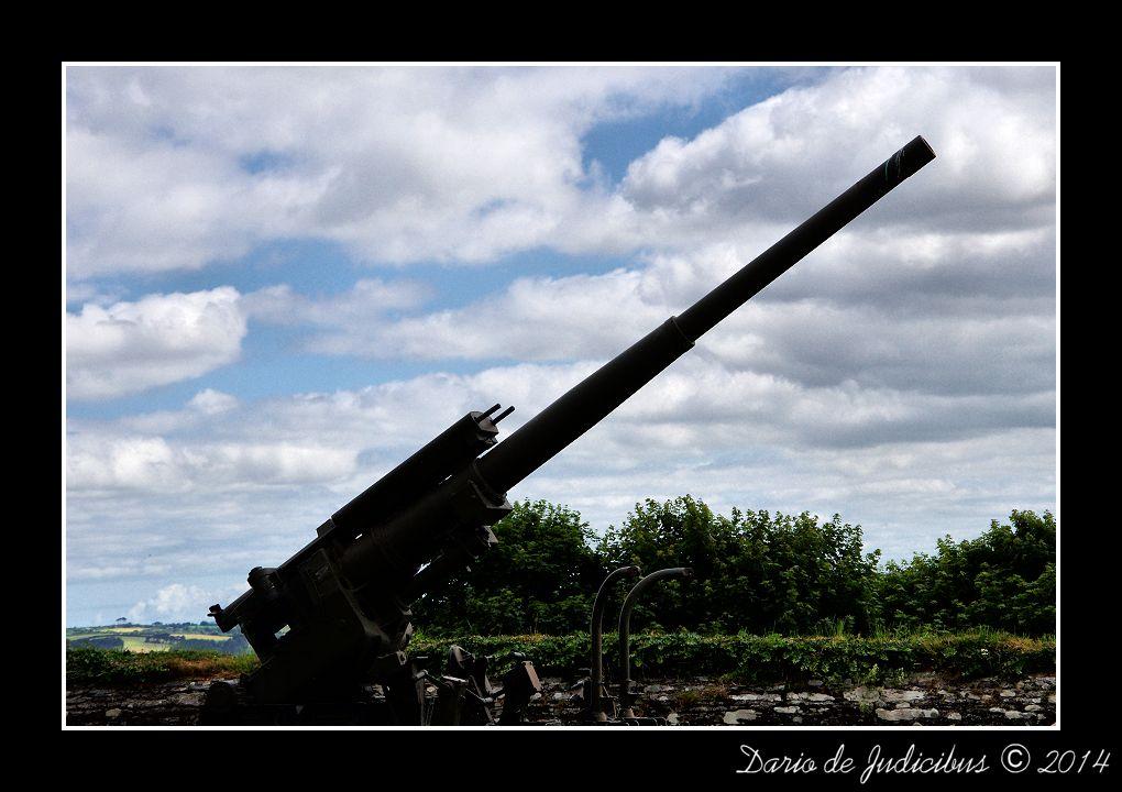Cannon #03