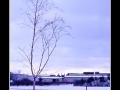 Tree #05